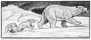 "Illustration by H.E.M. Sellen from the story ""The Least of These"""