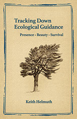 Tracking Down Ecological Guidance by Keith Helmuth